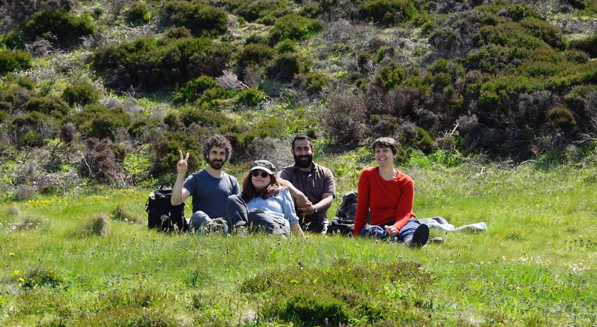 Four people sat on a grassy hillside